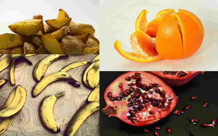 uses of vegetable and fruit peels